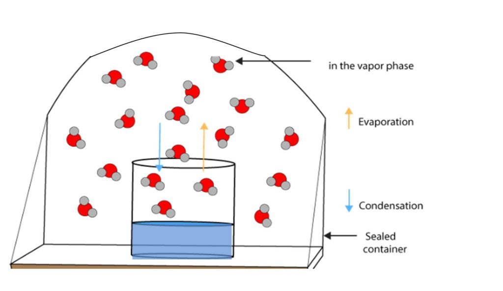 Tutorial on vapor pressure from Ecor Pro